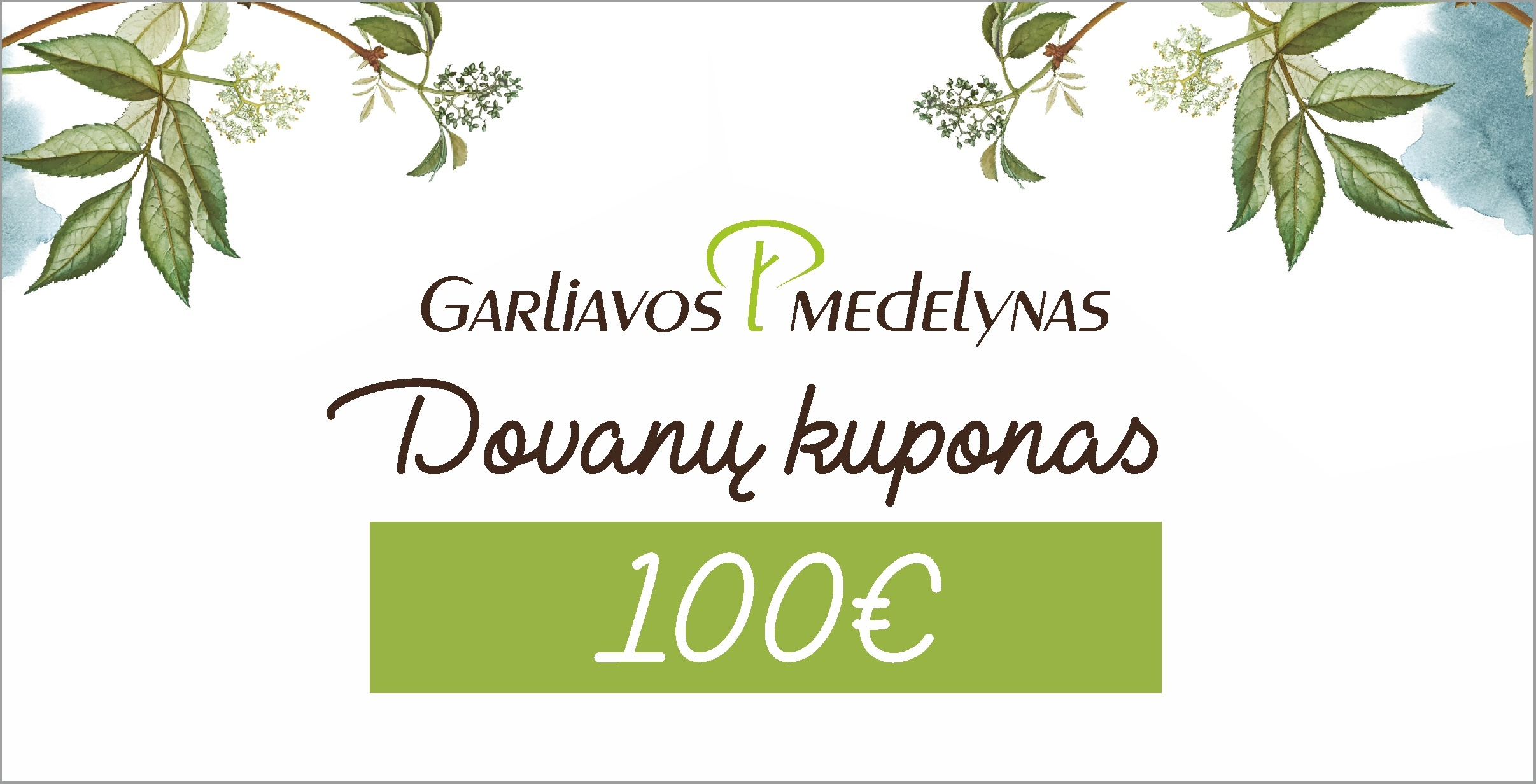 Dovanų kuponas 100eur
